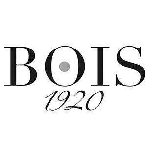 بويس 1920