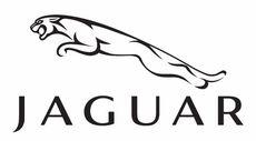 جاكوار Jaguar